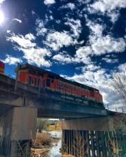 Denver365_2017 - 95