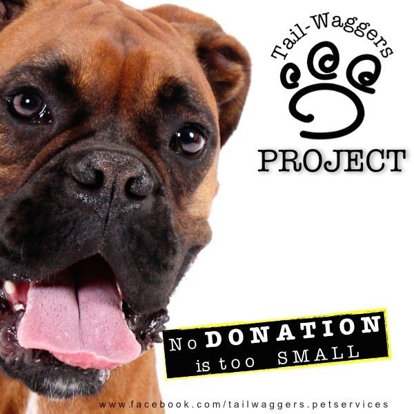 Donation Program. Tail-Waggers  Project