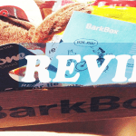 @barkbox July arrived! Surf's Up Pups! #Review