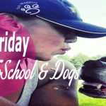 #BarkFriday  Top 5 Tips  #BacktoSchool & Dogs