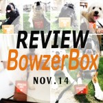 .@BowzerBox November Review. Great value!