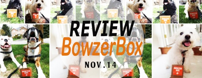 BowzerBox November Product Review