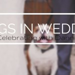 Dogs in Weddings: Enzo Celebrating with Dannielle & Frank