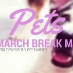Pets: Tips to Avoid a March Break meltdown