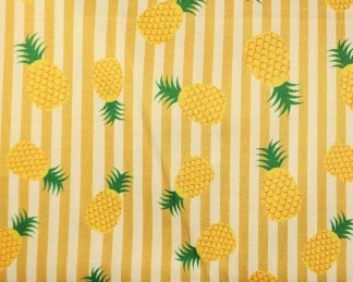 PUL45 Ananas et rayures