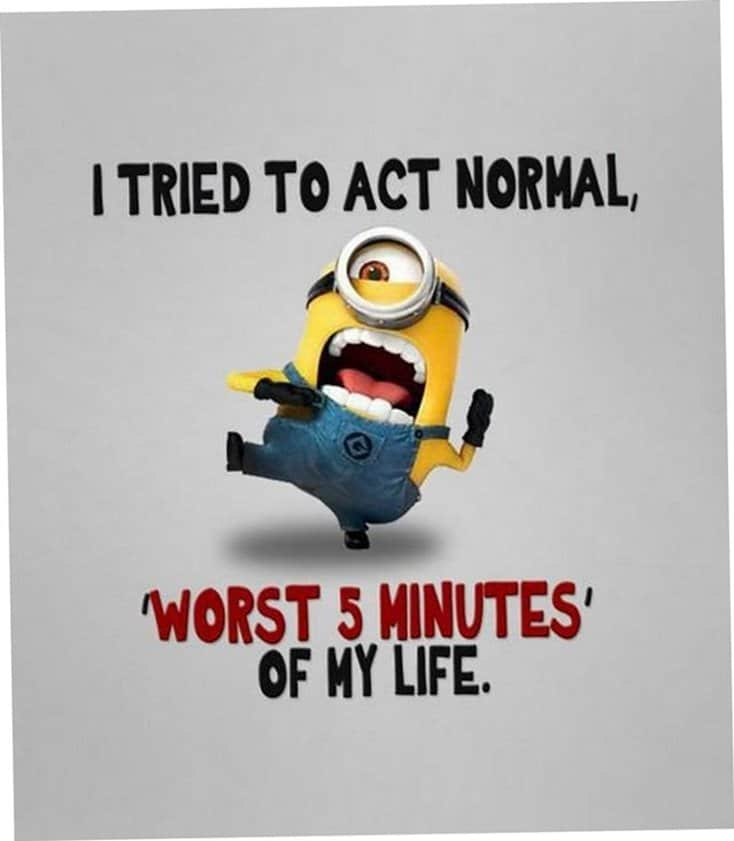 150 Funny Minions Quotes And Pics Page 22 Of 25 Tailpic