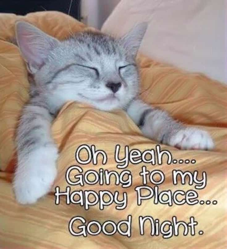 365 Good Night Quotes and Good Night Images 5