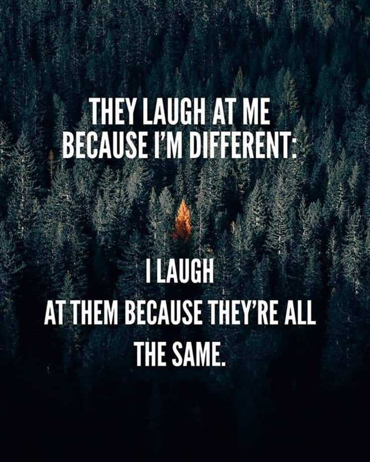 55 Funny Motivational Quotes That Will Inspire You Extremely 24