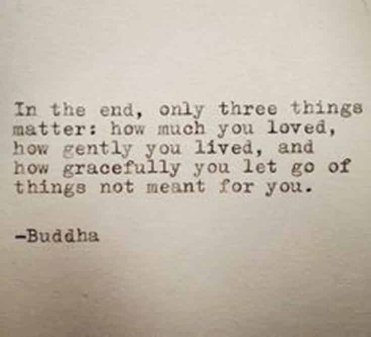 56 Buddha Quotes to Reignite Your Love 30