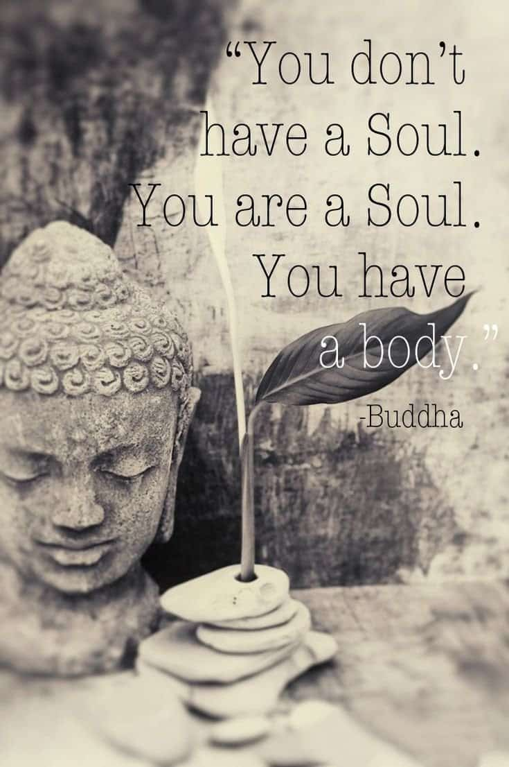 56 Buddha Quotes to Reignite Your Love 50