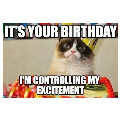 45 Funny Happy Birthday Memes That Will Render You Wishes Tailpic