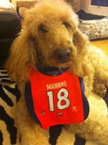 Manning fan