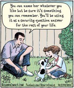 comics-bizarro-dog-name-755433