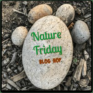 Nature Friday