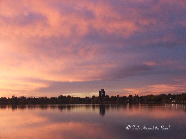 Sloans Lake
