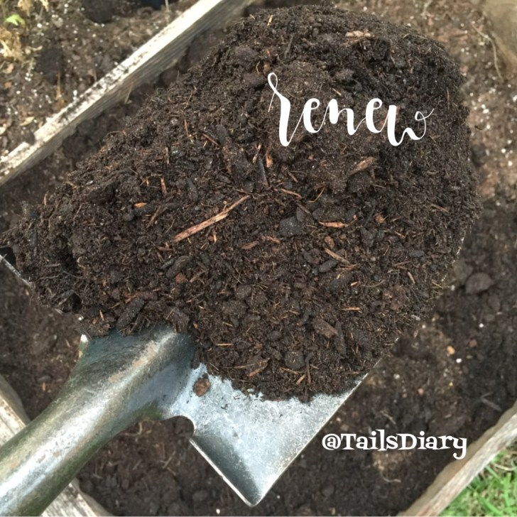 Renew the garden beds with new soil