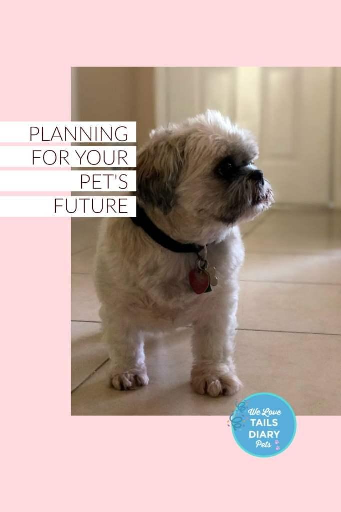 Pet Parent Planning for Peace of Mind