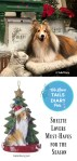 Sheltie Lovers Must-Haves for the Season