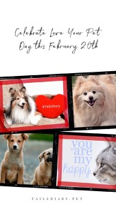 _Love Your Pet Day_ is celebrated on February 20th