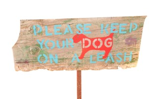 Keep dogs on a leash
