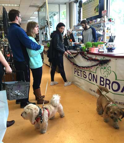 This dog owner has 2 dogs in a very busy pet store on flexi leads. While she was trying to purchase her items, the dogs were all over the place, tripping up others.