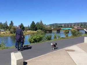 These folks were walking their dog on a retractable leash on this very busy river walk with bikers, kids and many other dogs. Right after this photo, I bike almost got hung with the line.