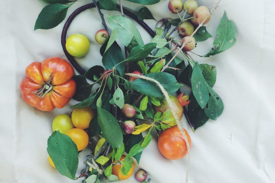 spier wine farm organic vegetables