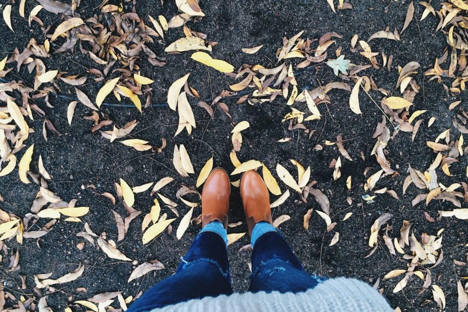 Winter walks make for some beautiful scenes