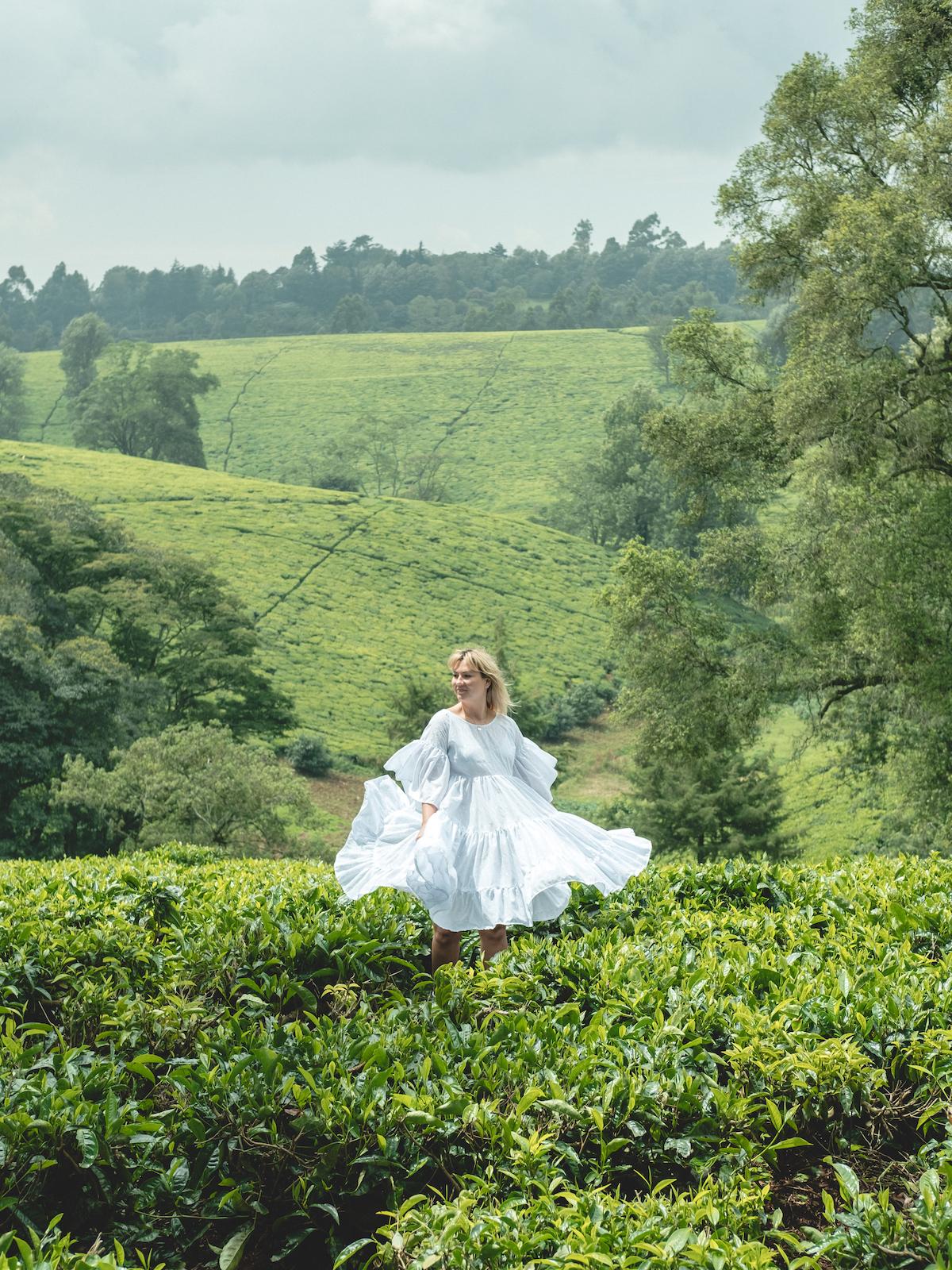 nairobi day trip kiambethu tea farm