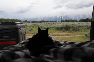 4Runner camping in the Grand Tetons