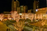 柏の葉キャンパス駅前イルミネーション