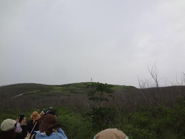 灯台への道