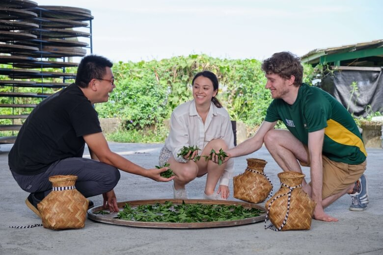 The DIY experience with local tea grower.