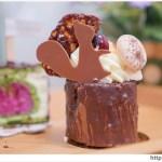 AGIO chocolates1