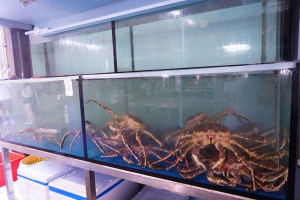 2019 10 15 010257 - 裕泰海產台中海鮮批發商,就在環中路鐵皮屋內,各類海鮮樣式俱全