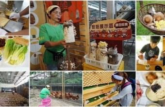 2020 07 20 224048 - 熱血採訪║新社百菇莊,香菇生態循環再生體驗、採菇、餵雞、蒸蛋DIY、蛋捲DIY,小孩走進開心農場實地體驗!