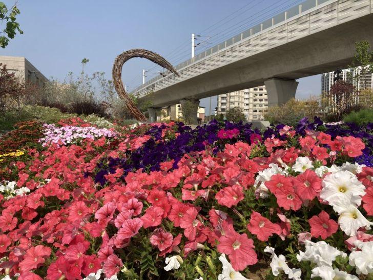2021 03 19 012202 - 豐原車站旁打卡新景點,五彩繽紛花卉佈置成浪漫花廊步道,心鎖橋結合愛心打造成互動式裝置藝術