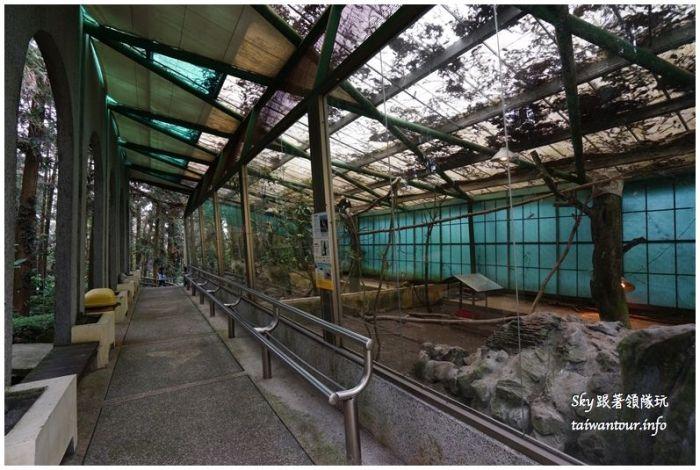 南投景點推薦鳳凰谷鳥園溜滑梯瀑布國立自然科學博物館DSC00375_结果