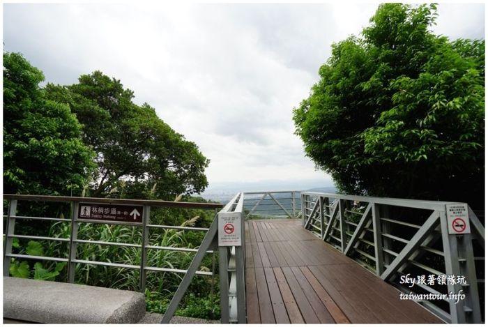 新北市五股觀音山林梢步道DSC04848