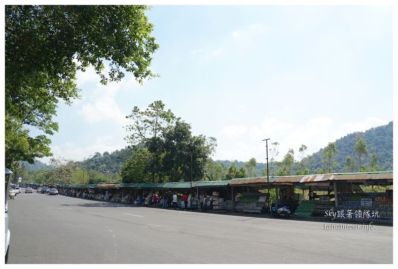 泰國親子旅遊綠山動物園kheow kheow00067