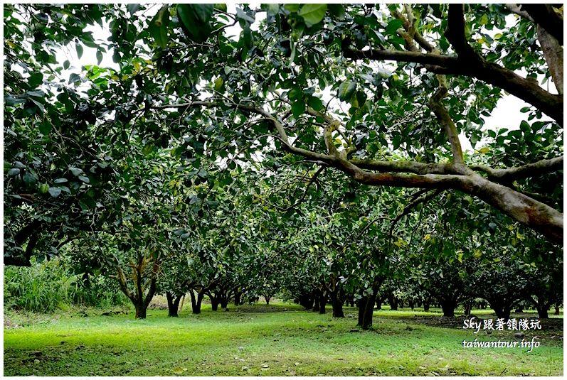 花蓮行程推薦養和屋活動柚遊自在柚來野餐趣DSC06331_结果