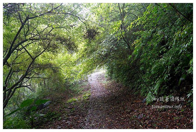 雙溪貂山步道九份07305