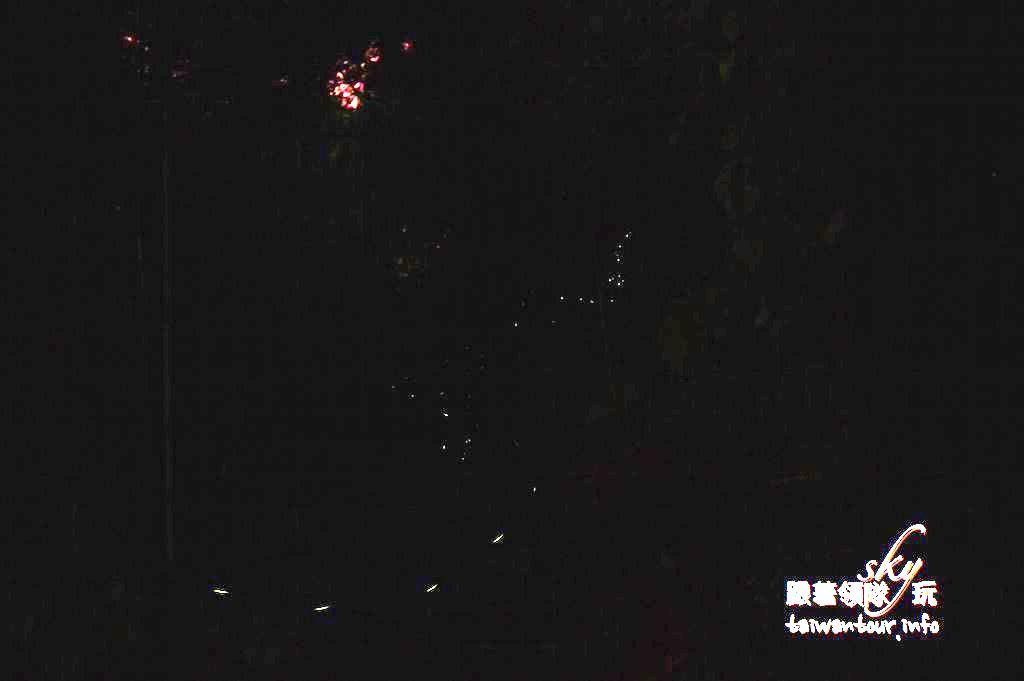 嘉義【阿里山二日遊景點】私房五星生態.部落.茶席