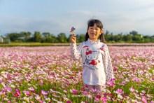 閱讀文章:【2019桃園花彩節】免費景點時間.平鎮區地點.交通一日遊