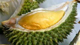 Durian 02