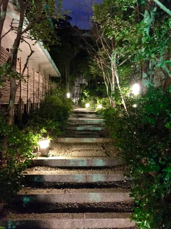 bamboo_path.JPG