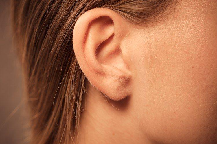 شكل الاذن بعد عملية تصغير الاذن