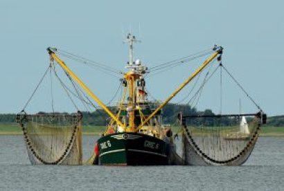 漁船 画像