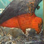 東日本大震災から9年経った被災地岩手県釜石市の現状を報告