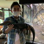 静岡iZooに行ってきました!ワニを持っちゃいました!渥美さんのカメレースも紹介します!